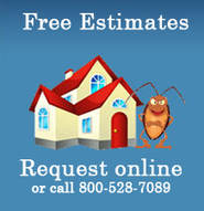 Pest  and Termite Control at Lake Arrowhead | Pest Control Services | Scoop.it