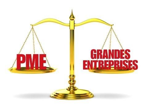 Infographie e-commerce : Les PME à l'honneur sur le web pour 2014 ! | Ecommerce - Webmarketing - Le Blog Cible web | Webmarketing | Scoop.it