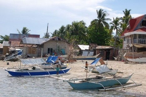 Financing Sustainable Fisheries With Impact Investments - NatGeo News Watch (blog) | socentUS | Scoop.it
