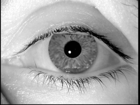 Ingeniería Inversa del Iris que engaña a los escáneres oculares | Salud Visual (Profesional) 2.0 | Scoop.it