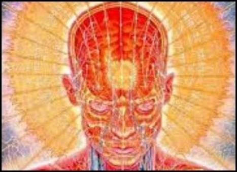Meditation Technique Repairs the Brain Processes that Aspartame Destroys | Health & Nutrition Freedom | Scoop.it