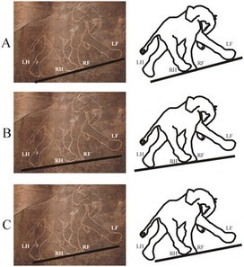 Cavemen Were Better at Depicting Quadruped Walking than Modern Artists: | Neolithic Age | Scoop.it