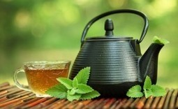Investing in Quality Assurance: A Tea Industry Perspective - Food Safety News   Time for a cuppa   Scoop.it