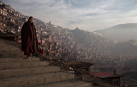 Buddhist Bliss Dharma Assembly in Tibet, in pictures | Photojournalism & documentary photography Fotografia sociale e documentaria, fotogiornalismo | Scoop.it