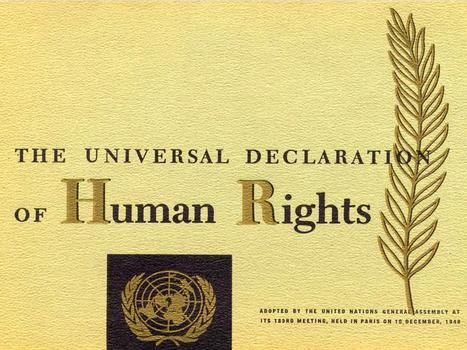 REPORT: Drugs and Democracy | Human Rights and drug policy RECOMMENDED | Drugs, Society, Human Rights & Justice | Scoop.it