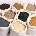 Phosphorus digestibility of alternative feed ingredients for pigs   Global Milling   Phytic acid   Scoop.it