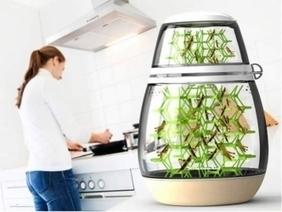 10 inovações verdes da casa do futuro   Reciclando com Sustentabilidade e Amor a Vida   Scoop.it