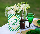 Wizard of Oz Wedding Ideas | VIPENT DJ-BEST One Stop American Resource for Special Events | Scoop.it