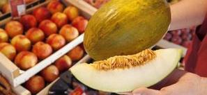 El genoma completo del melón da pistas para mejorar su producción - Genoma España | All About Food | Scoop.it