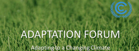 Adaptation Forum 2013 | Peace-building and post-conflict development | Scoop.it