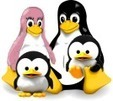 #Tux4Kids High Quality Educational Software Alternatives #edtech20 #elearning | A New Society, a new education! | Scoop.it