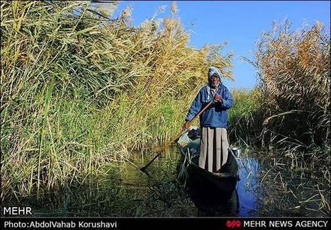 Photos: Life in Hawizeh Marshes - Payvand   Mesopotamia   Scoop.it
