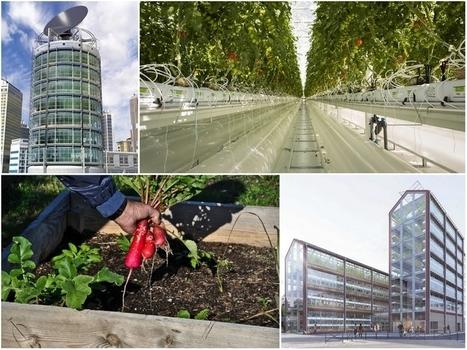 L'agriculture urbaine se développe partout et même à Marseille | Attitude BIO | Scoop.it