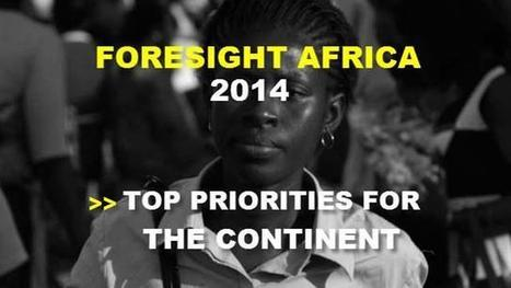 Foresight Africa 2014: Professionalization of Political Parties - A Precondition to Peace and Stability in Africa   Geography + Africa   Scoop.it