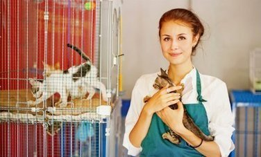 25 Creative Ways to Help Animal Shelters | Care2 Healthy Living | Animals R Us | Scoop.it