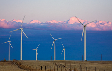 Energy: Can wind farms be too large? | GarryRogers NatCon News | Scoop.it