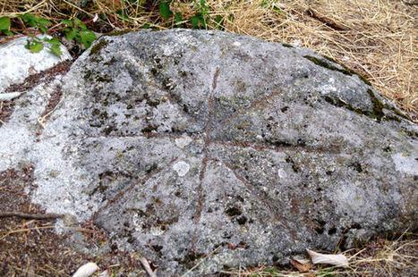 Gravures rupestres au Rec del Bosc | Megalithes en photo | Scoop.it