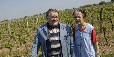 Gironde : la production de vin du château Le Meynot détruite par les ... - Sud Ouest | Oenotourisme en Entre-deux-Mers | Scoop.it