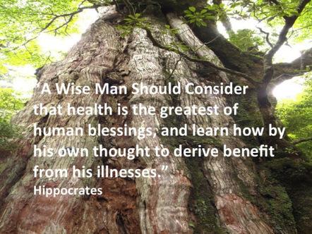 When Wellness Win | When Wellness Wins | Scoop.it