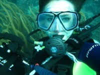 Experiencing a nosebleed while scubadiving | All about water, the oceans, environmental issues | Scoop.it
