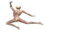 Fisioterapia: PLASTICIDAD NEURONAL | ayudas biomecanicas | Scoop.it