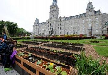 Agriculture urbaine à l'Assemblée nationale au Québec   Sustainable imagination   Scoop.it