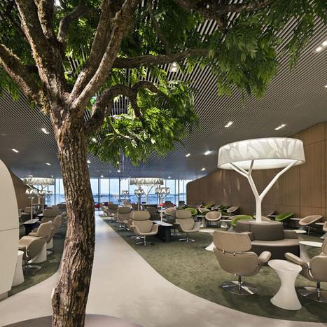 Brandimage et Noé Duchaufour-Lawrance : Salon Affaires Air France   Design Love   Scoop.it