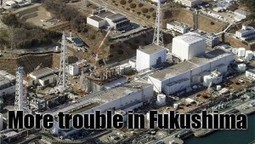Fukushima News #STi | News From Stirring Trouble Internationally | Scoop.it