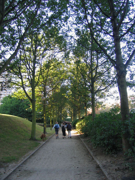 Het GPDO (3): bomen en beken | Wetgeving - Législations | Scoop.it