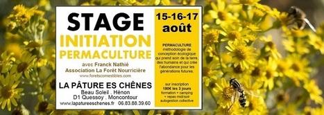 Initiation à la Permaculture en Bretagne le week-end du 15 août (La Pâture es Chênes, HENON 22) | C'était un petit jardin... | Scoop.it