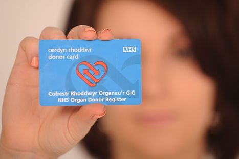 Organ donation: Presumed consent plan needs greater clarity for families, says BMA   Ethics and law of organ donation   Scoop.it