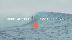 Le surf inspiré par Wes Anderson | VIDEOS | Scoop.it