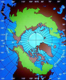 The Rapid and Startling Decline Of World's Vast Boreal Forests by Jim Robbins: Yale Environment 360 | Climate change challenges | Scoop.it