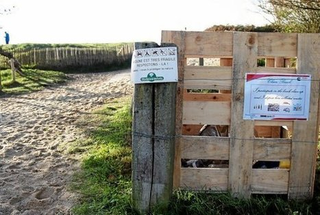Plages : les « bacs à marée » débarquent | L'environnement en Bretagne | Scoop.it