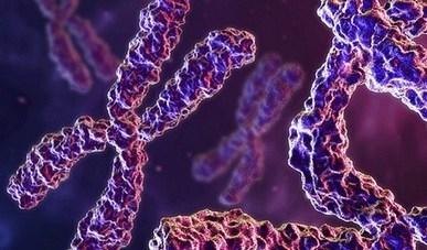 Genetics Home Reference | Biblioteca Médica Virtual - Blog | Biodiversity | Scoop.it