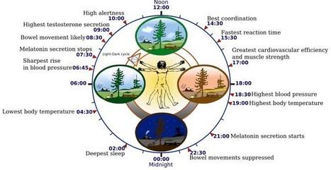 Biorhythms - Crystalinks | Química | Scoop.it