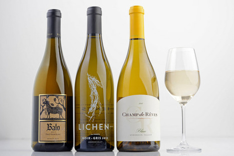 Wine: White pinot noir? Like Champagne, without the bubbles | Vitabella Wine Daily Gossip | Scoop.it