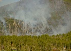 U.S. wildfire season on pace to break last year's record | Farming, Forests, Water, Fishing and Environment | Scoop.it