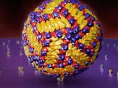 Virus Explorer | HHMI BioInteractive | Viral Modeling and Simulation | Scoop.it