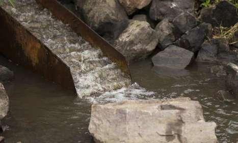 Fish ladders reconnect stream habitat | Oceans and Wildlife | Scoop.it