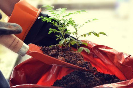 Growth Hacking Guide & Marketing Channels For Beginners | Inbound Marketing Strategies | Scoop.it