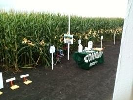Troxler Looking for 400 Bushel Corn in North Carolina | SFNToday.com | North Carolina Agriculture | Scoop.it