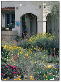 Introduction to creating a landscape design | Desert Landscaping in Peoria | Scoop.it