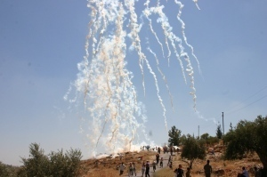 The Deadly Experiment – Israel's Murderous Testing Ground for 'Non-Lethal'Weapons | Occupied Palestine | Scoop.it