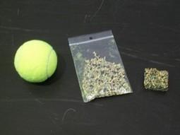 Roland-Garros: « Opération Balle Jaune » de tennis - Natura Sciences | Sport | Scoop.it