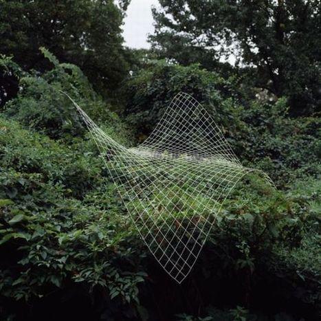 Funciones matemáticas aplicadas en la naturaleza por Nikki Graziano | La importancia de las Matemáticas en los avances de la sociedad | Scoop.it