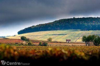 Des vignes au Patrimoine mondial - Le Journal du Centre   Le vin quotidien   Scoop.it