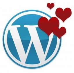 Wordpress et les TPE : love is in the air… | volan maxime | Scoop.it