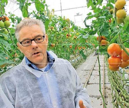 El secreto de la agricultura holandesa | Food related production. | Scoop.it