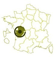 Cartopartie à Poitiers pendant Campus en Festival ! - Les Petits Débrouillards Poitou-Charentes | Cartes libres et médiation numérique | Scoop.it
